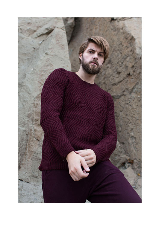 Adam Link in bordo sweater